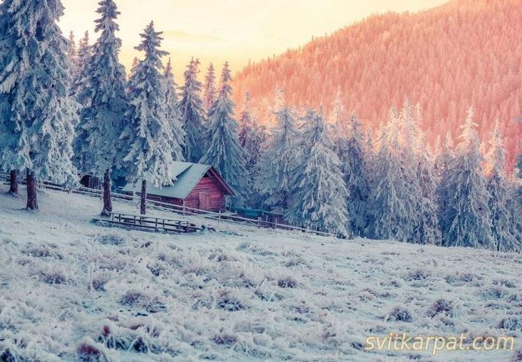Карпати засніжені зимою